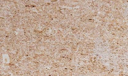 Lumaquela Rosa Spanish Marble